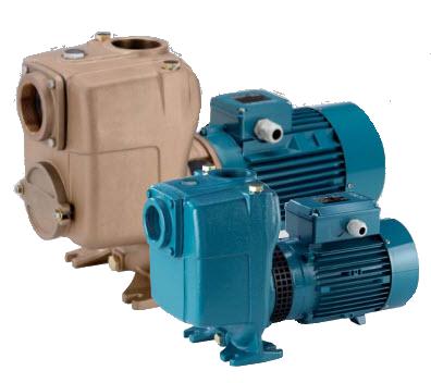 ปั๊มน้ำสำหรับระบบ Transfer Pump