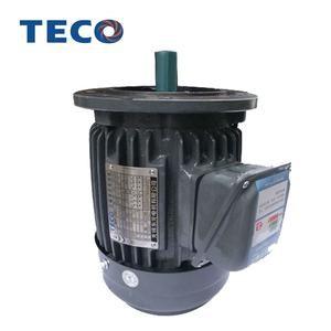 TECO Motor Flange Mount type